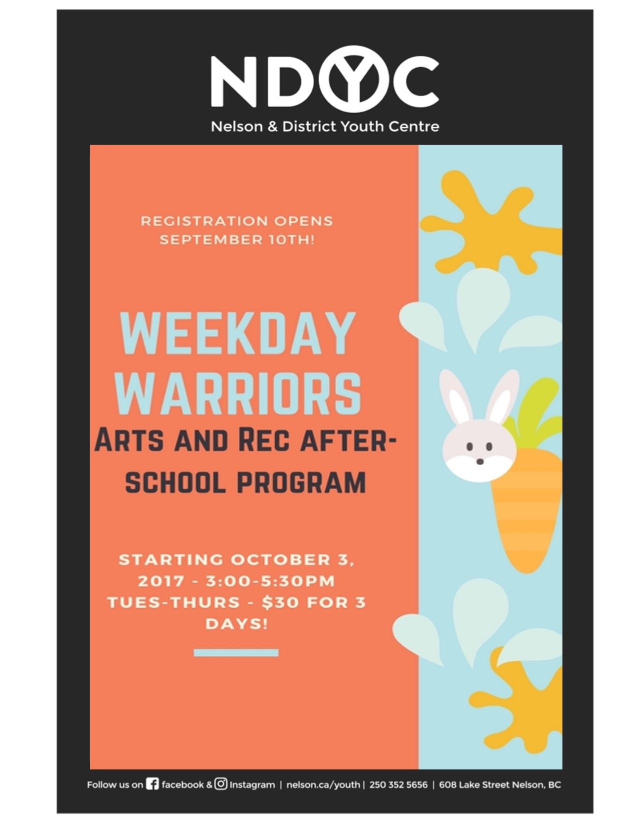 Wkday Warriors Poster 2017